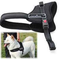 High Quality Nylon Dog Harness and Leash Collar for Pet