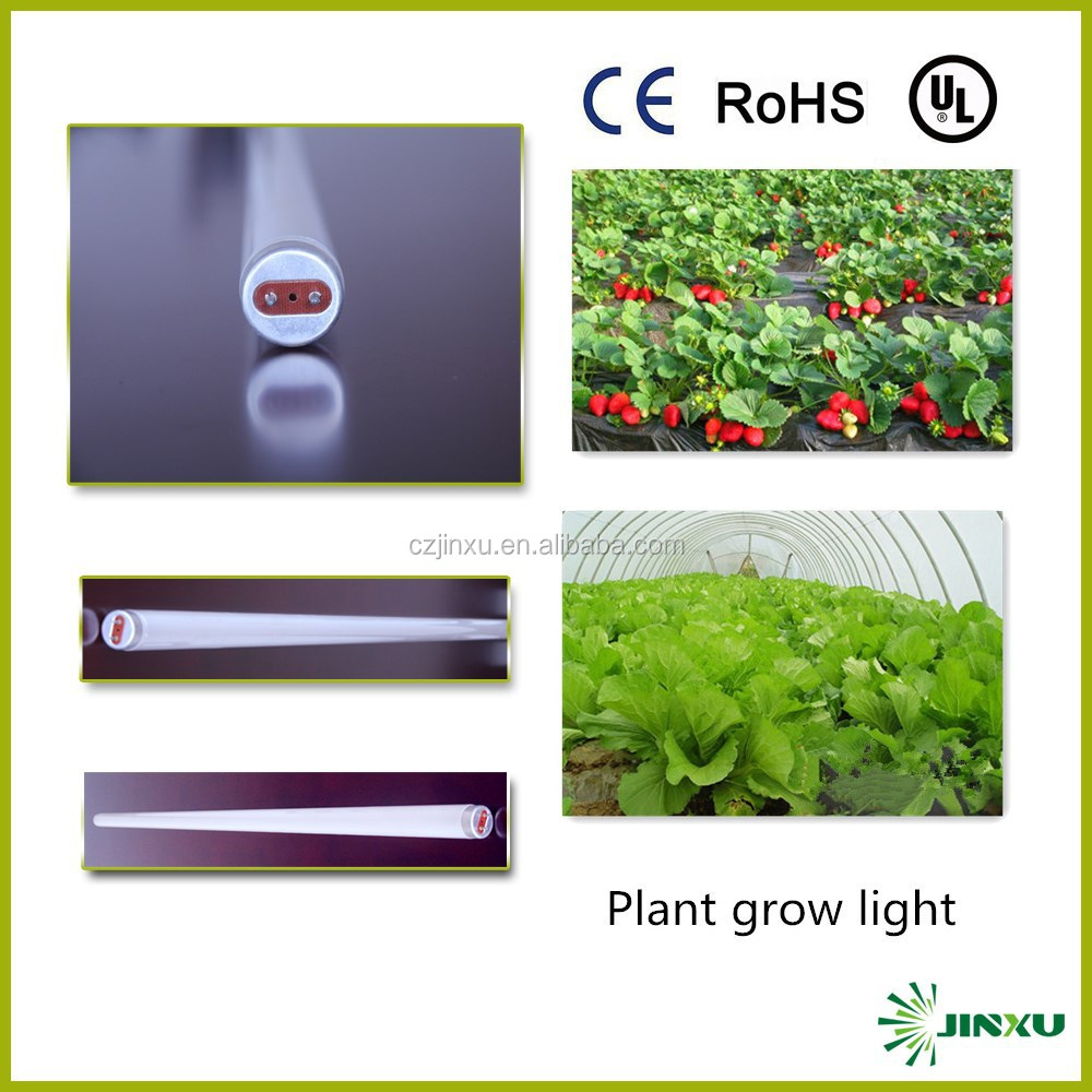 Outdoor Induction Lamp Plant Growing Light Buy 36w Grow