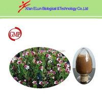 High qality best price Eyebright Extract from GMP manufactory