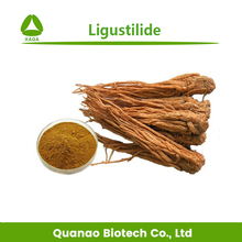 Free sample Angelica Root Extract Angelica sinensis Extract Ligustilide / ferulic acid 0.15%-1% HPLC