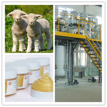 Pure lanolin / Wool Fat / Pharmaceutical Grade / EP4