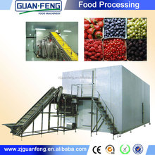 IQF quick freezer for green peas