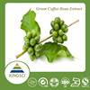 pure chlorogenic acid green coffee bean extract powder