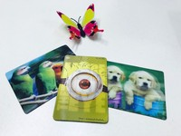 3D stereo pictures 3D cute lenticular images printing & designing fridge magnets