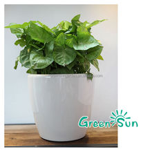 plastic flower pot garden pot manual corn planter