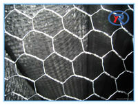 cheap galvanized chicken wire mesh/hexagonal chicken house