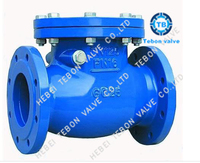 DIN JIS BS Cast iron / Ductile iron Swing Check Valve Flanged