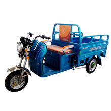 Alibaba China Supplier Differential Motor Electric Pedicab
