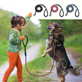 2017 New fashion nylon braided reflective design dog leash led