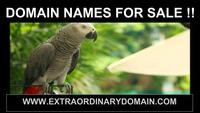 DOMAIN NAMES FOR SALE 1-888ORGANIC.COM
