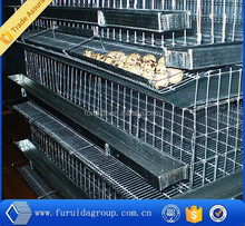 FRD-Large-scale automatic battery quail cage