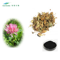 GMP factory supply red clover seed extract/red clover tea