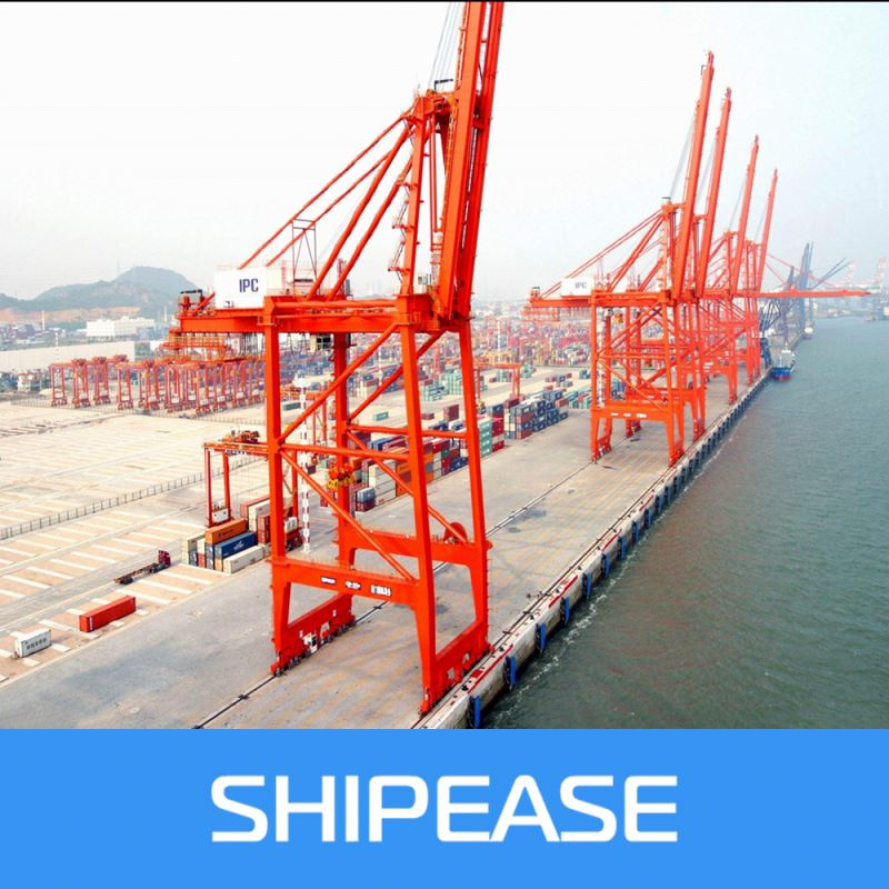 sea shipping to Izmir,Turkey from china ,shenzhen/ningbo/shanghai etc for FCL/LCL with cheap price