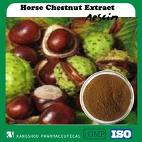 Hot product pharmaceutical grade aescin horse chestnut extract Powder