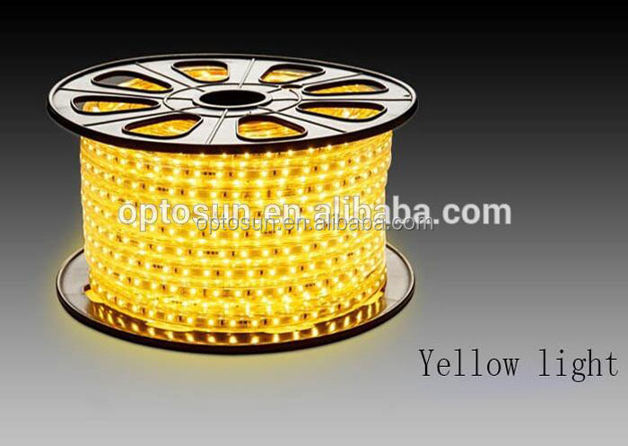 Ac120v/220v Smd 5050 Led Ropelight Ip65 14.4w 60led Led Strip 220v 5050