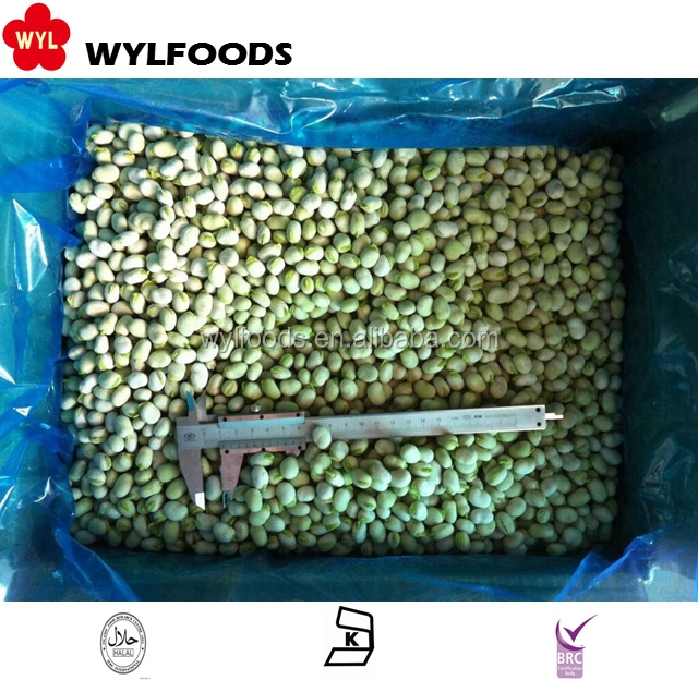 100% High Quality frozen baby broad beans
