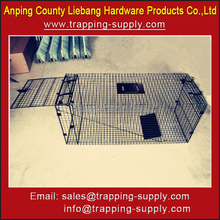 Large Animal Trap Cage for Sale Raccoon Dog Woodchuck Cage Trap
