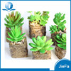 mini decorative succulent artificial succulents with pot for home decorations / garden decorations