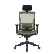 Ergonomic chair with adjustable lumbar support for lower back pain