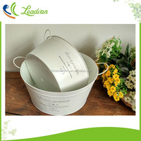 Coloured metal pot wrought iron window flower box