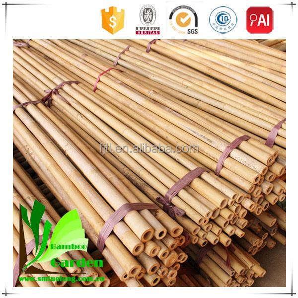 бамбук для удочек