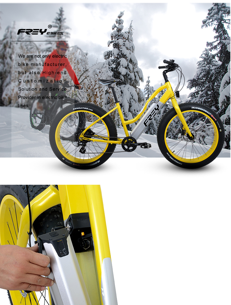 500-1000W Fat tire electric bike/ snow bike/beach bike fat 26*4.0inch FREY