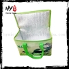 Factory Supply nonwoven wine cooler bag, beer bottle cooler bag, outdoor lunch cooler bag