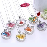 Heart Shaped Pendant Love Crystal Plants