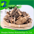 2017 Top quality natural health tonic morel mushrooms