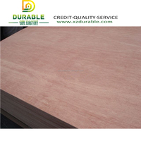 4x8 plywood, plywood sheet ,high quality bintangor plywood BB/CC Grade for export