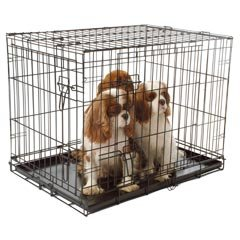 pvc coated folding metal dog cage