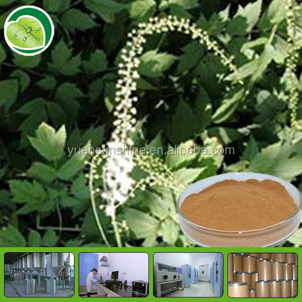 High Quality Black Cohosh Extract Powder/malt extract powder