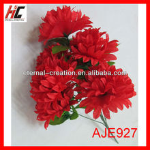Indoor plants with red flowers stage decoration for graduation wedding flower bouquets