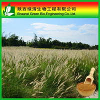 Manufacturer supply horsetail herb extract, 7%, 14% horsetail silica powder