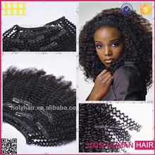 Wholesale Factory Price Fullhed Brazilian Virgin Human Hair 220g remy clip in hair extension