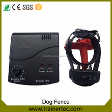 Electric dog fence digging outdoor