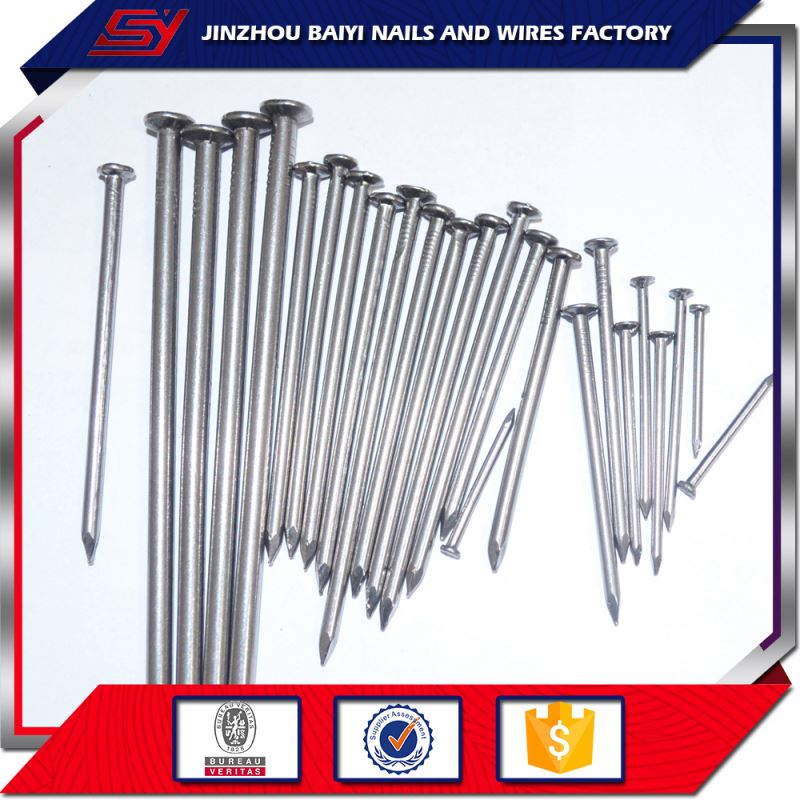 new products Electro galvanized galvanized concrete steel nail 16mm