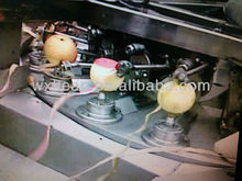 Apple peeling/pitting/cutting machine
