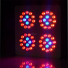 wholesale full spectrum high power 5watt 300w apollo led grow light with good quality