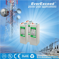 EverExceed tubular rechargeable battery pack for home appliances