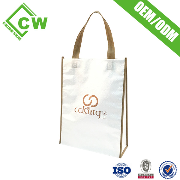 China Company Direct Sale Double Handles Functional Use Shopping Bag Printing Bags For Sale