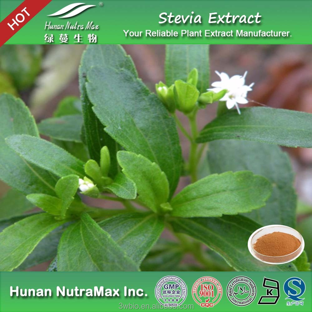 High quality Enzymatically modified stevia,steviol glycosides,glucosyl SG from cGMP manufacturer