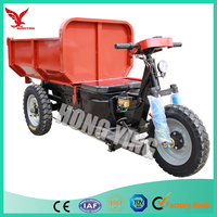 250cc 3 Wheel Trike Bike/Trike Motorcycle with Electric Motor for Sale
