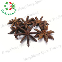 Natural Chinese Cooking Spice Dry Whole Selected Stemless Star Anise