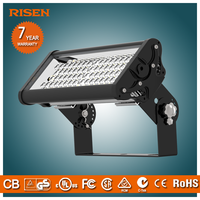 Risen Decoration Project 50w Led Meanwell Led Floodlight