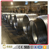 Low price galvanized wire / binding wire for construction