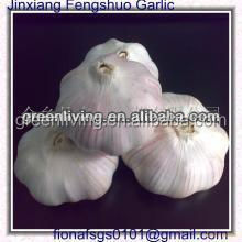 2014 competitive price fresh garlic, China(4.5cm,5cm,5.5cm.6cm up)