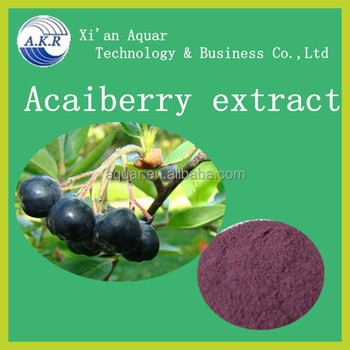 Pure Acai Berry Wholesale in High Quality