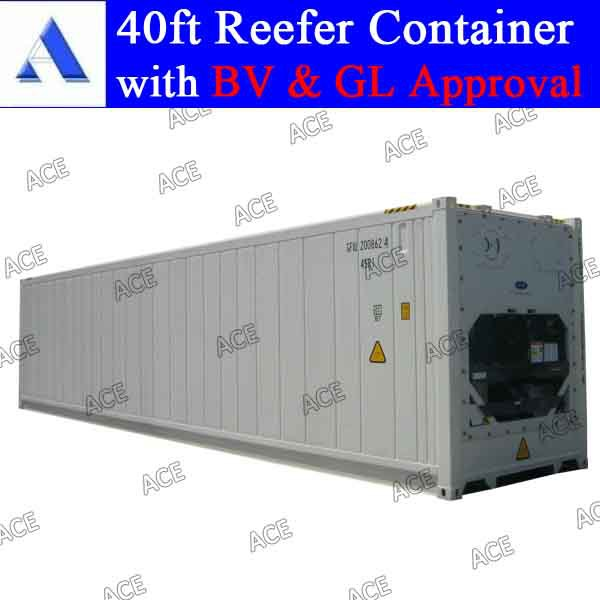 Brand new carrier reefer container