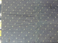 Fashion Cotton Elastane Printing Denim Fabric and Textile